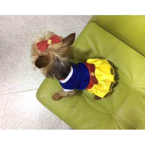 DOG CHOW ®CACHORROS RAZAS PEQUEÑAS