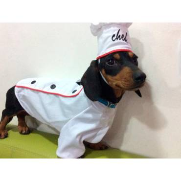 PURINA® DOG CHOW® Cachorritas®