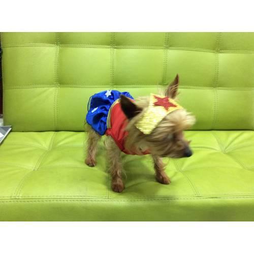DOG CHOW ADULTOS ESSENTIALS