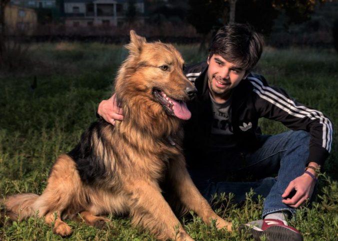 Que Acciones Debes Hacer Si Tienes Una Mascota En Casa